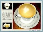 DIY Coffee Pot Descaler.001